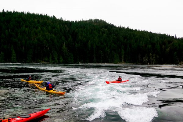 Sea Kayaking Recreational Courses and Expeditions | SKILS